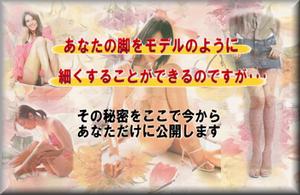 美脚パーフェクトプログラム~GOLD~.png